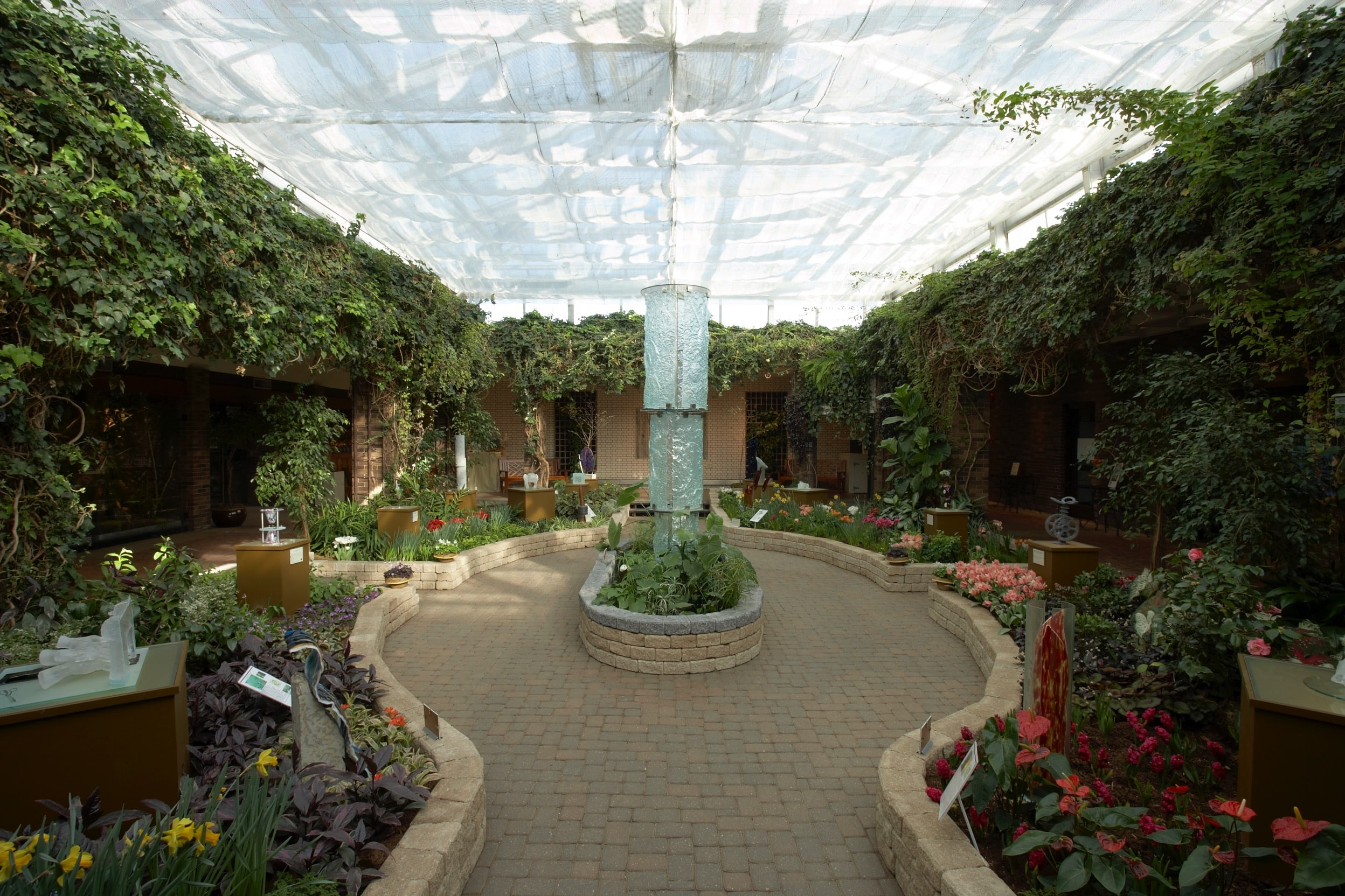 G_Shannon_Conservatory - 1029