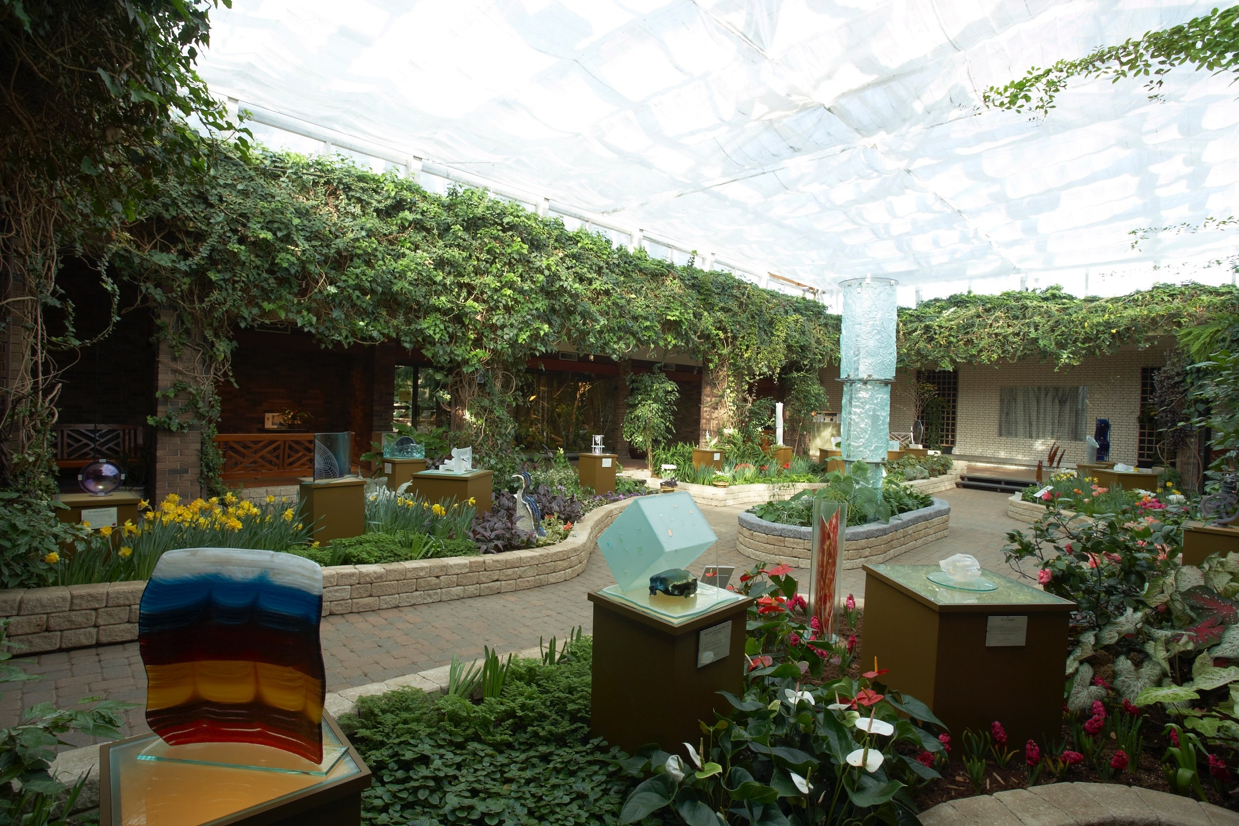 G_Shannon_Conservatory - 1036